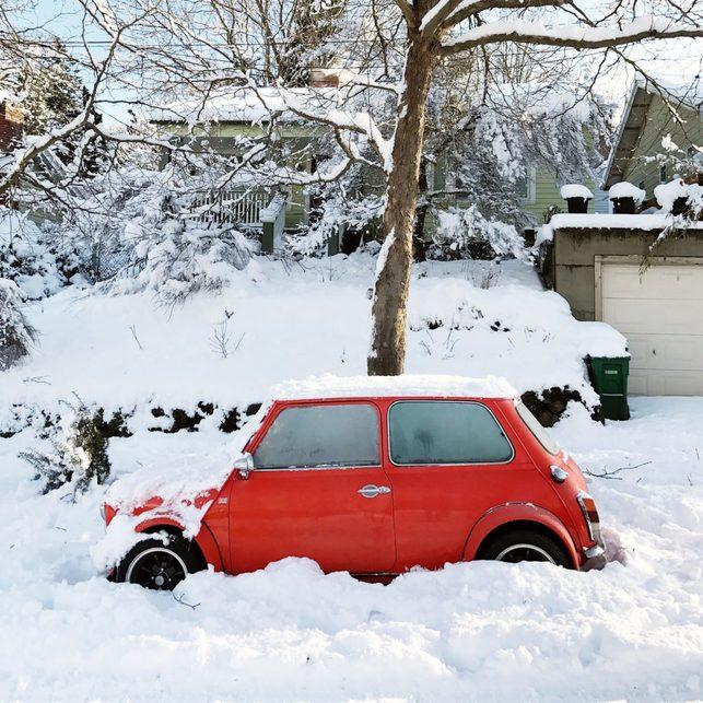 portland snowday_0012